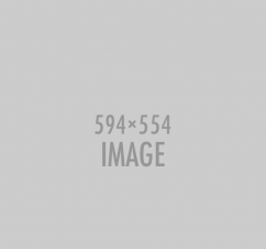 img1_594x554